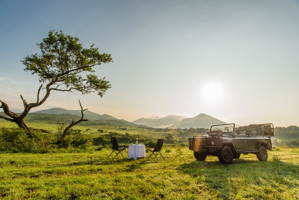 Enjoy two game drives a day